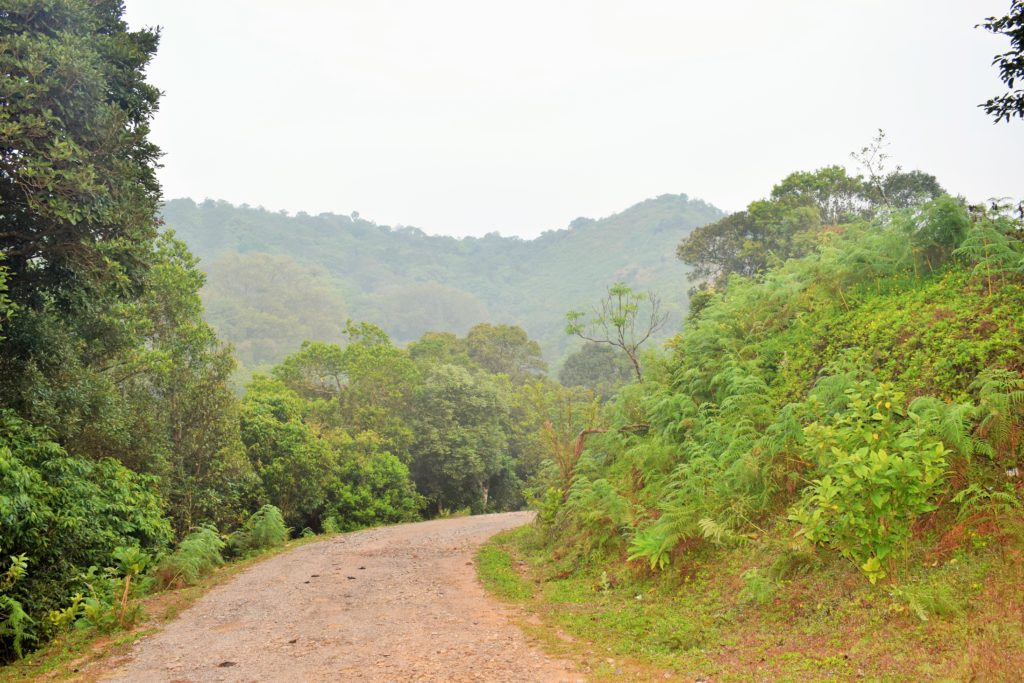 Roads to Betta Byraveshwara Temple