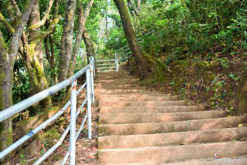 Wide Steps to Mallahalli falls